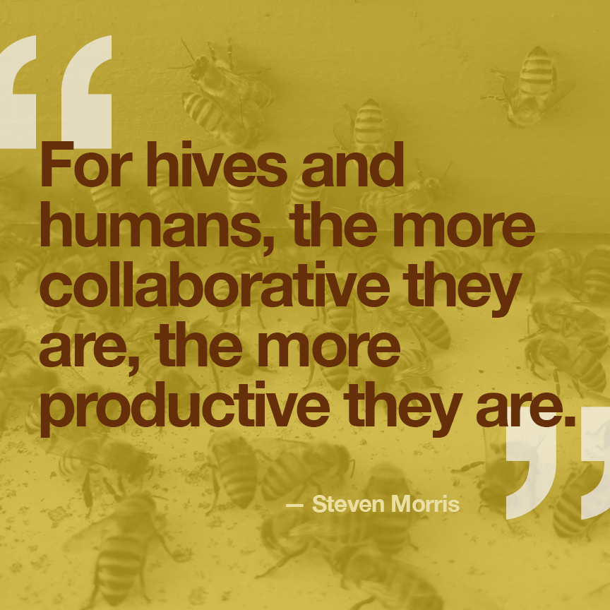 Bees and Your Business.